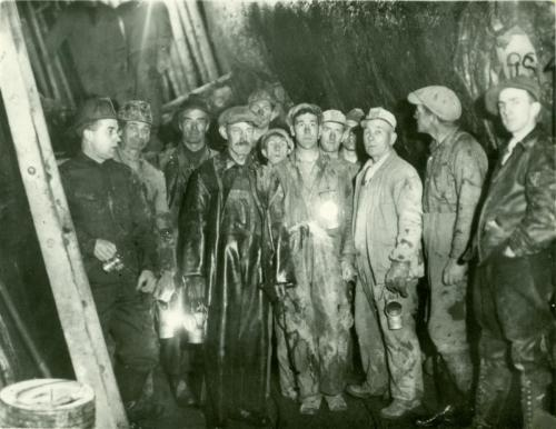 Waverley Gold Miners